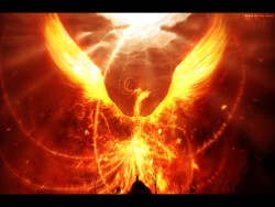 Fantasy-Dragon-17704.jpg